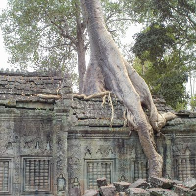 Cambodge Siem Reap 12 février 2011