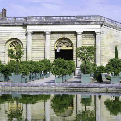 Versailles 11 juillet 2011 - Bassin de l'Orangerie