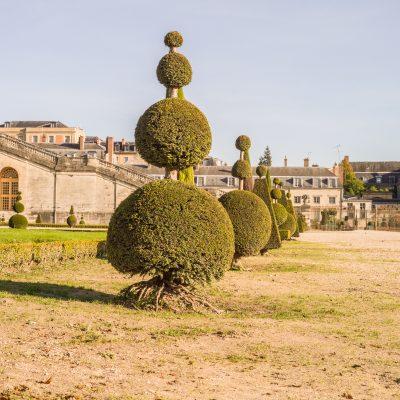Versailles l'orangerie 31 octobre 2016