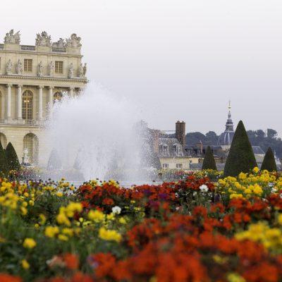 Versailles l'Orangerie 8 septembre 2014