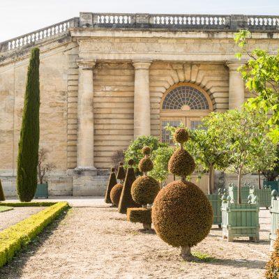Versailles l'orangerie du château au printemps 20 avril 2017