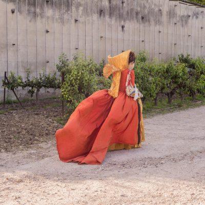 Versailles - 15 juin 2014 Le potager du Roi - mois de Molière